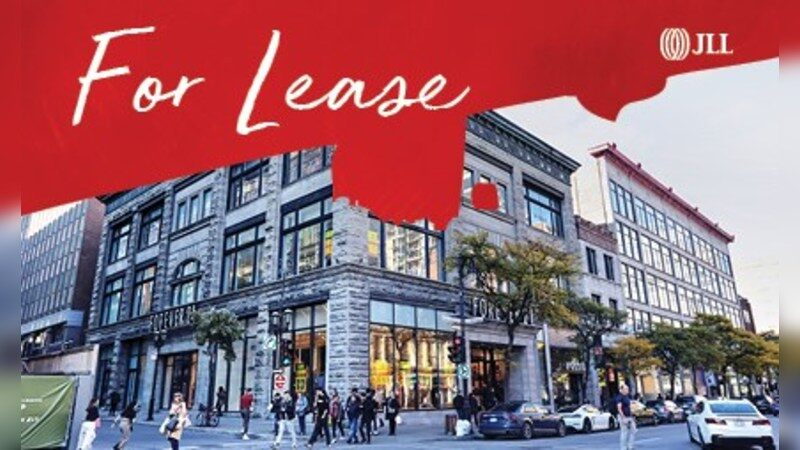 1255 Rue Sainte-Catherine - Alternatives - Lease